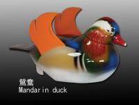 鴛鴦 Mandarin duck